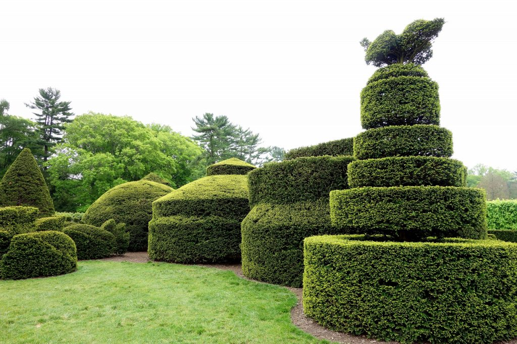 English Topiary at Longwood Gardens