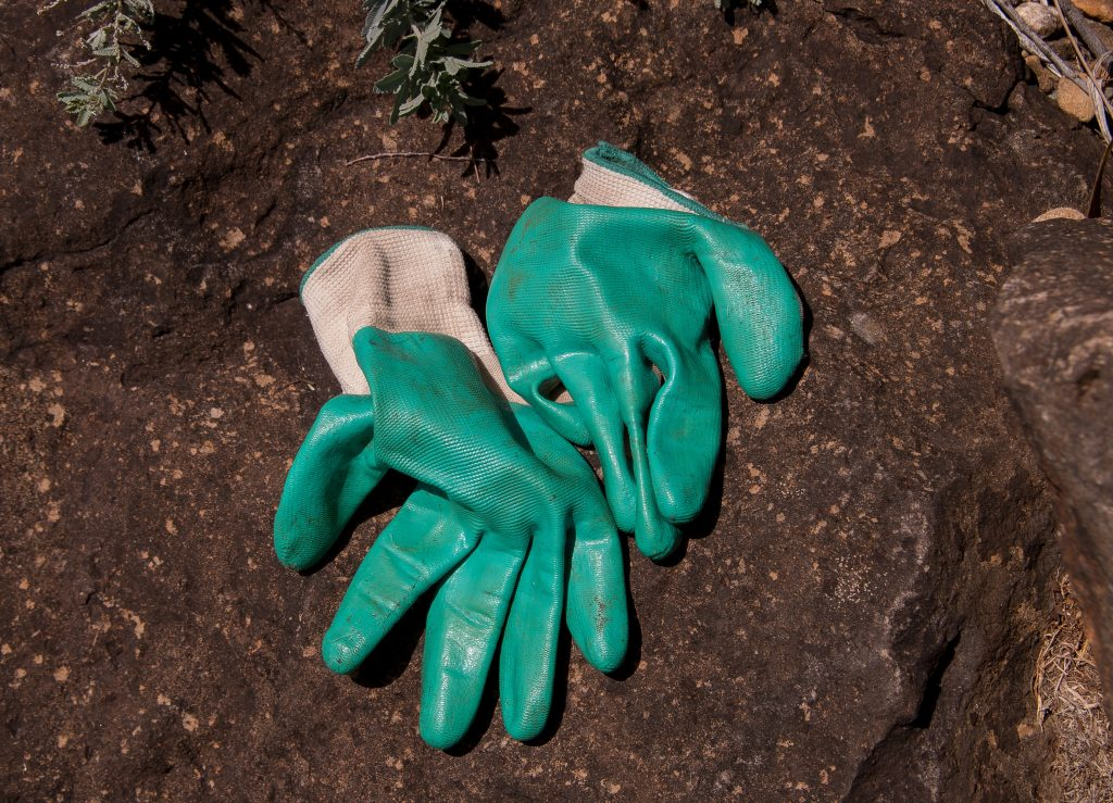 Which Are The Best Gardening Gloves?