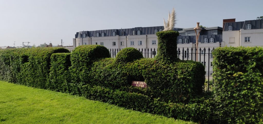 The Leamington Flyer Topiary Hedge